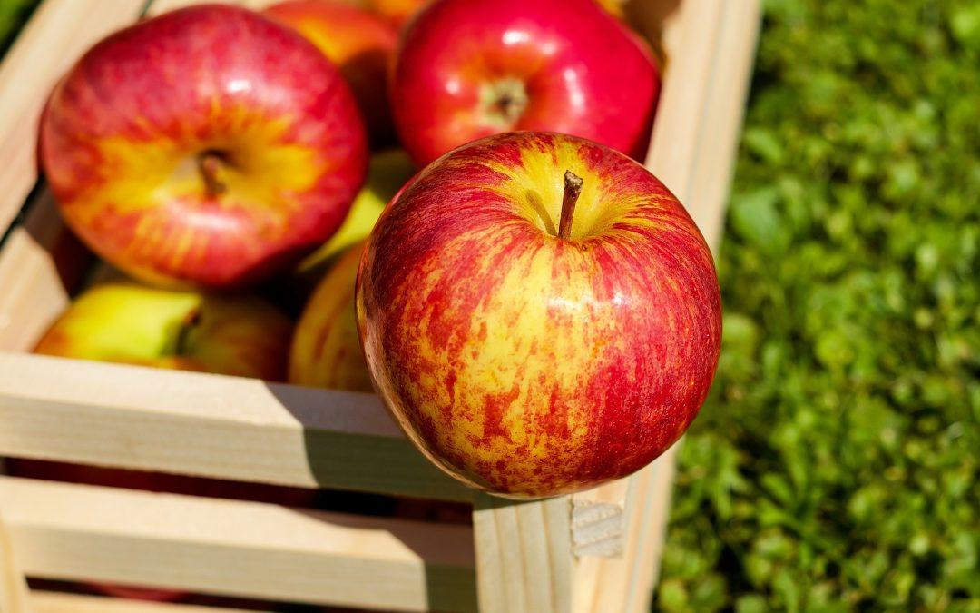 10 alimentos saludables para combatir la diabetes