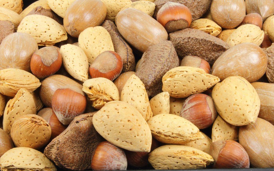 Frutos secos: proteína, fibra y grasas saludables